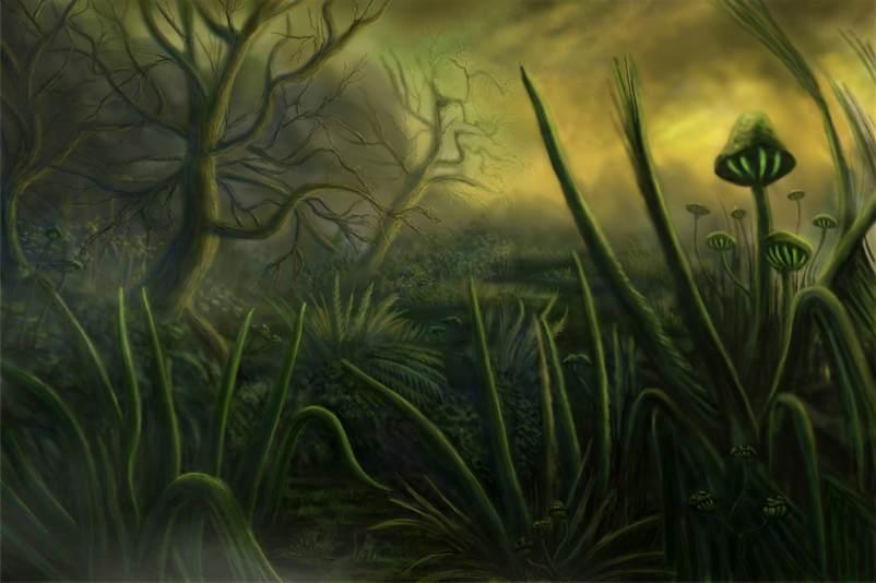 Sumpfwelt